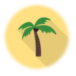 Drawing of a palm tree with coconuts